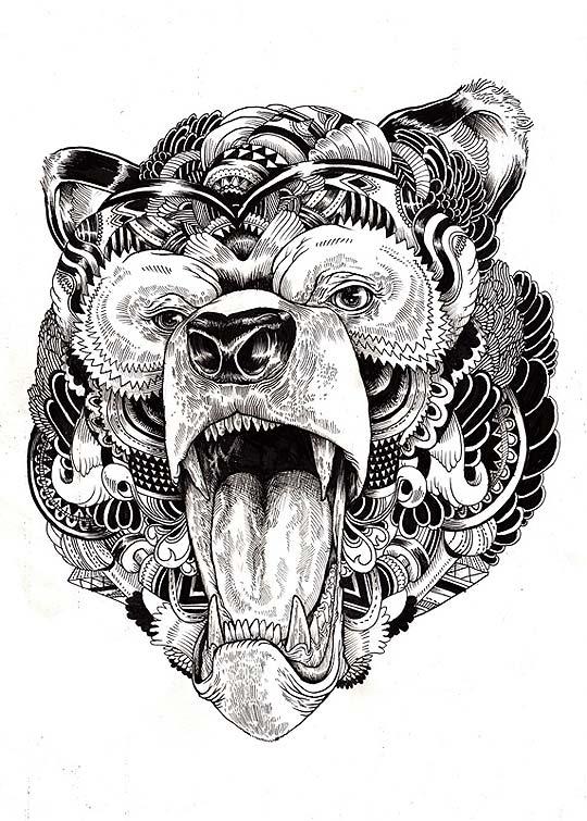 Dibujo e ilustración de IAIN MACARTHUR