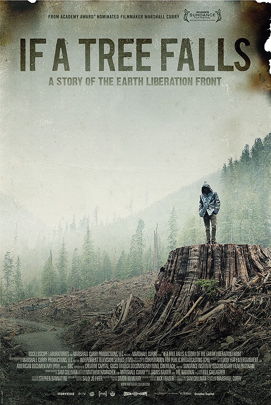 10 Posters de Película. Premios Oscar 2012. If a Tree Falls.