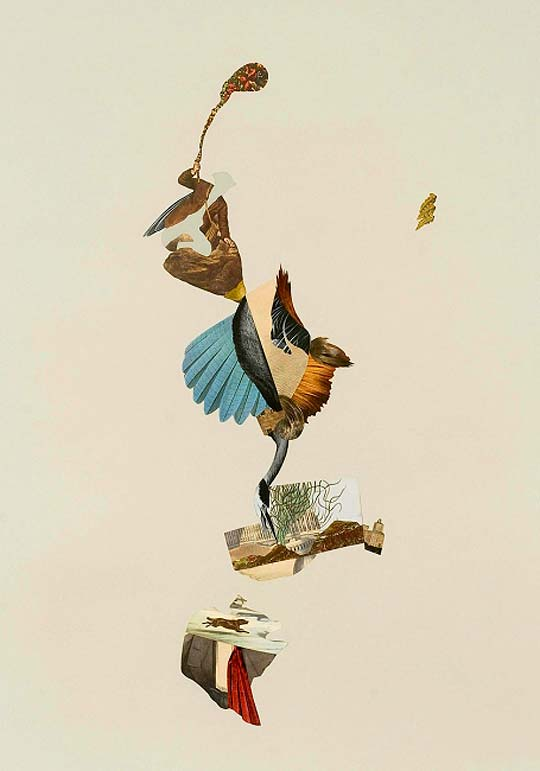 Collage de ERIKA LAWLOR SCHMIDT