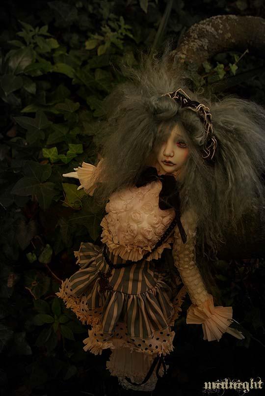 Muñecas de Lydéric et siiara's dolls