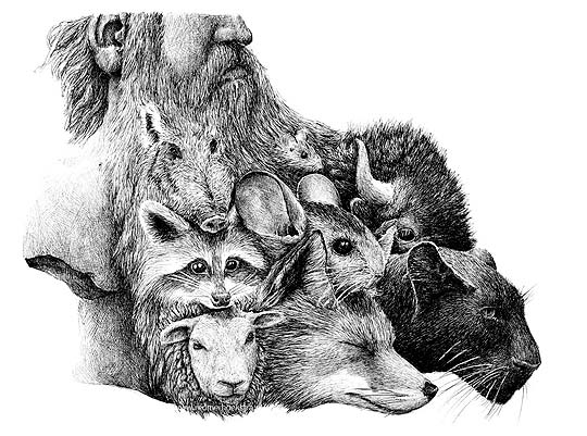 Dibujo surrealista de REDMER HOEKSTRA