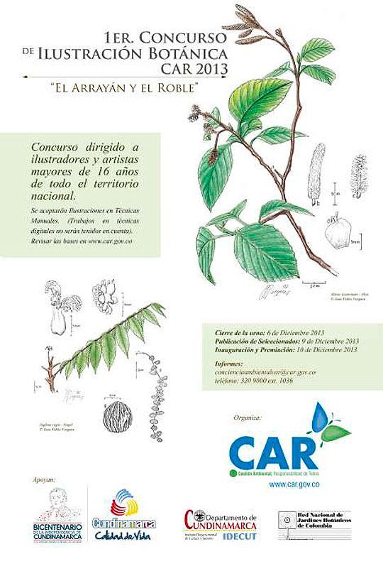 Primer Concurso de Ilustración Botánica CAR 2013.