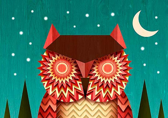 Night Owl de FERNANDO TORRRES ROJO