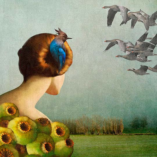 Ilustración de DARIA PETRILLI
