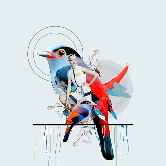 Collage de CAMILA VILLOTA BASTIDAS