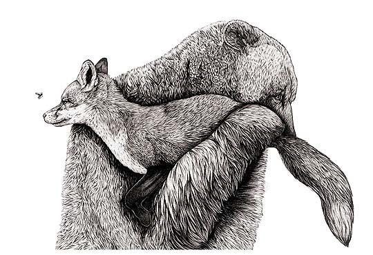Ilustración de AMY DOVER