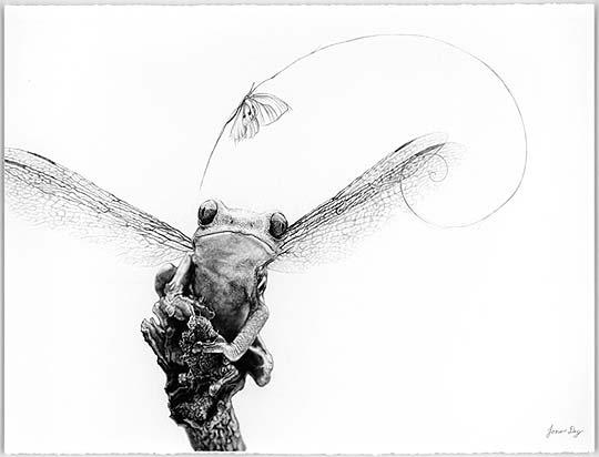 Dibujo en lápiz de JONO DRY
