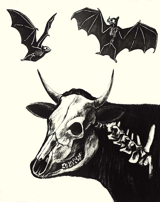 Ilustración de ANA BELLIDO aka Anaj